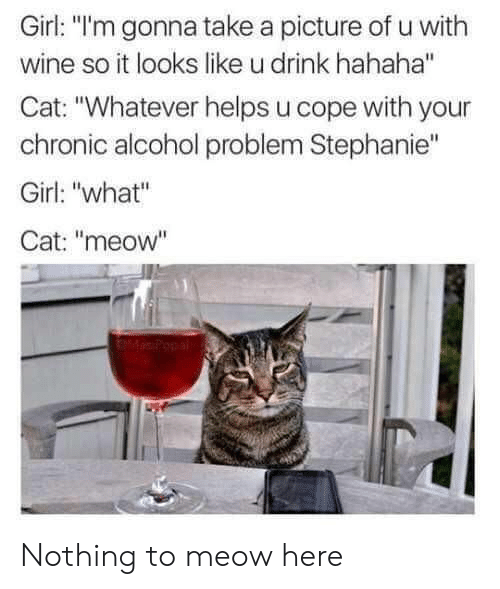 "cope: Girl: ""l'm gonna take a picture of u with  wine so it looks like u drink hahaha""  Cat: ""Whatever helps u cope with your  chronic alcohol problem Stephanie""  Girl: ""what""  Cat: ""meow"" Nothing to meow here"