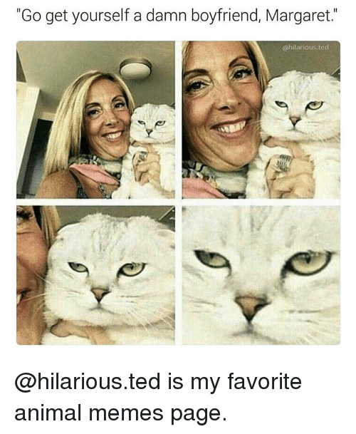"""Animation Meme: """"Go get yourself a damn boyfriend, Margaret.  @hilarious ted @hilarious.ted is my favorite animal memes page."""