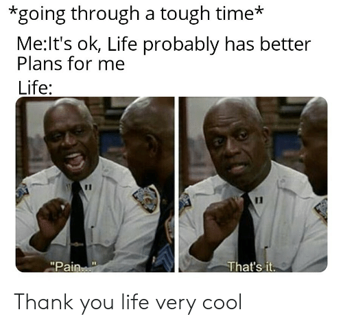 """Life, Thank You, and Cool: *going through a tough time*  Me:It's ok, Life probably has better  Plans for me  Life:  11  That's it  """"Pain Thank you life very cool"""