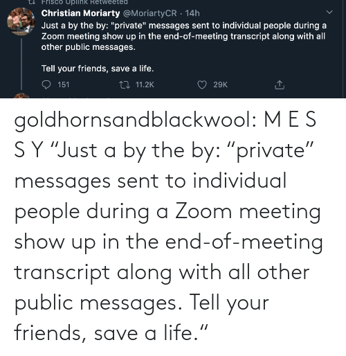 "Your: goldhornsandblackwool:  M E S S Y ""Just a by the by: ""private"" messages sent to individual people during a Zoom meeting show up in the end-of-meeting transcript along with all other public messages.  Tell your friends, save a life."""
