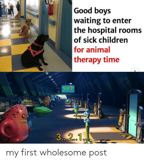 My First: Good boys  waiting to enter  the hospital rooms  of sick children  for animal  therapy time  3...2.1. my first wholesome post