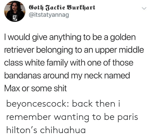 Chihuahua, Family, and Paris Hilton: Goth Fackie Burkhart  @itstatyannag  I would give anything to be a golden  retriever belonging to an upper middle  class white family with one of those  bandanas around my neck named  Max or some shit beyoncescock: back then i remember wanting to be paris hilton's chihuahua