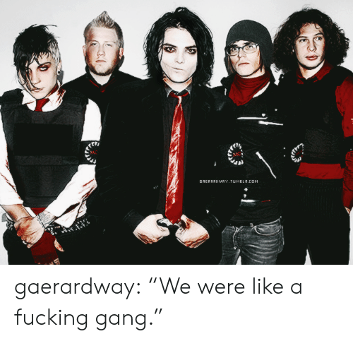 "Fucking, Tumblr, and Gang: GRERARDWRY,JUMBLR.cOM gaerardway: ""We were like a fucking gang."""