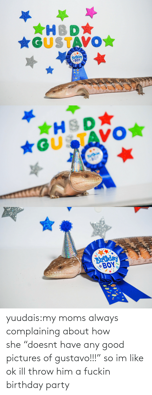 """Birthday: *GUSTAVO☆  Blrthday  ΒΟΥΣ   ★HSD  *GUSTAVO★   Barthday  BOY  Gunique yuudais:my moms always complaining about how she""""doesnt have any good pictures of gustavo!!!"""" so im like ok ill throw him a fuckin birthday party"""