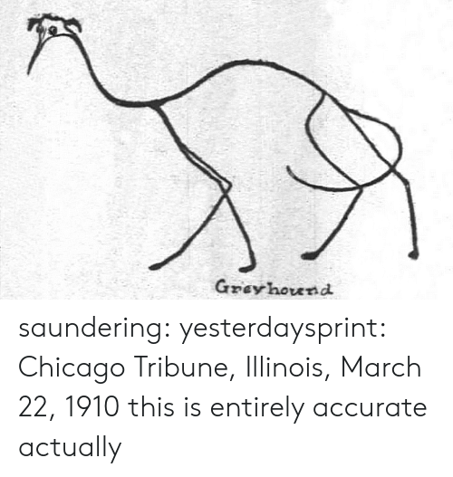 hound: Gzey hound saundering: yesterdaysprint:   Chicago Tribune, Illinois, March 22, 1910  this is entirely accurate actually