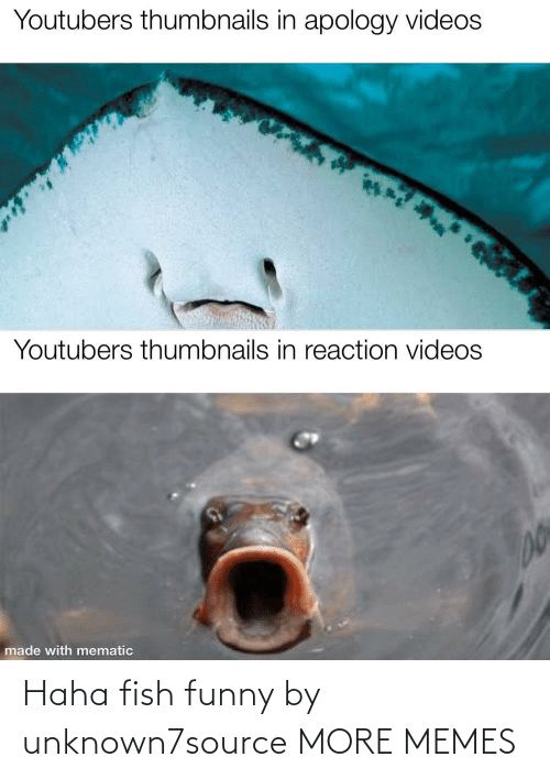 Haha: Haha fish funny by unknown7source MORE MEMES