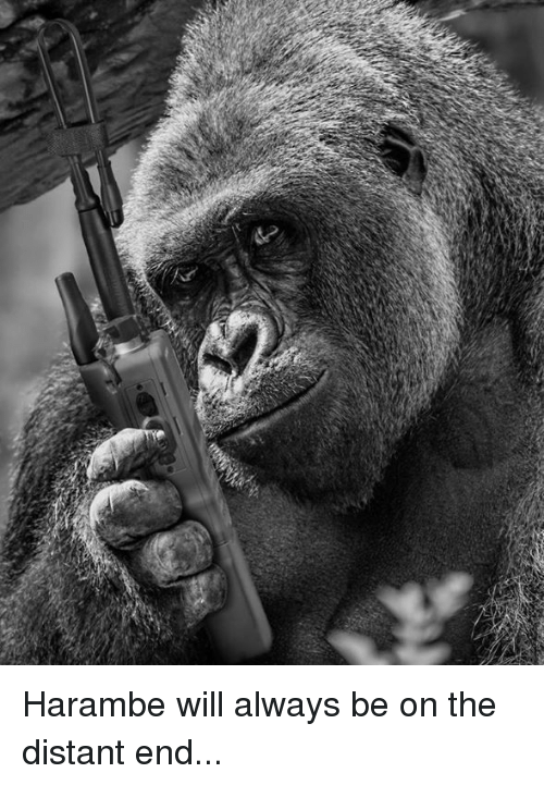 Harambism: Harambe will always be on the distant end...