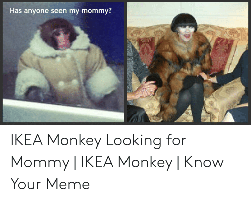 25 Best Memes About Ikea Monkey Know Your Ikea Monkey Know Your Memes