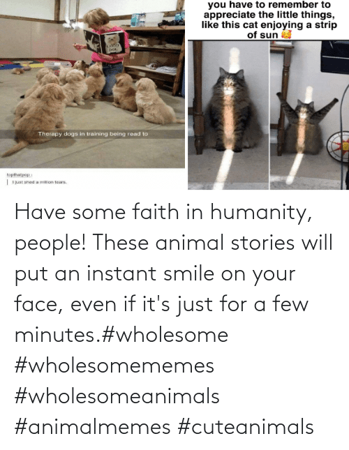 Its: Have some faith in humanity, people! These animal stories will put an instant smile on your face, even if it's just for a few minutes.#wholesome #wholesomememes #wholesomeanimals #animalmemes #cuteanimals