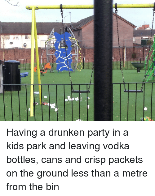 Party, Kids, and Vodka: Having a drunken party in a kids park and leaving vodka bottles, cans and crisp packets on the ground less than a metre from the bin