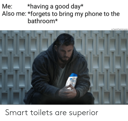 Superior: *having a good day*  Also me: *forgets to bring my phone to the  Ме:  bathroom*  u/lamCamicaze Smart toilets are superior