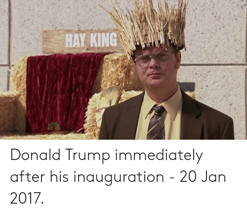 Donald Trump: HAY KING Donald Trump immediately after his inauguration - 20 Jan 2017.