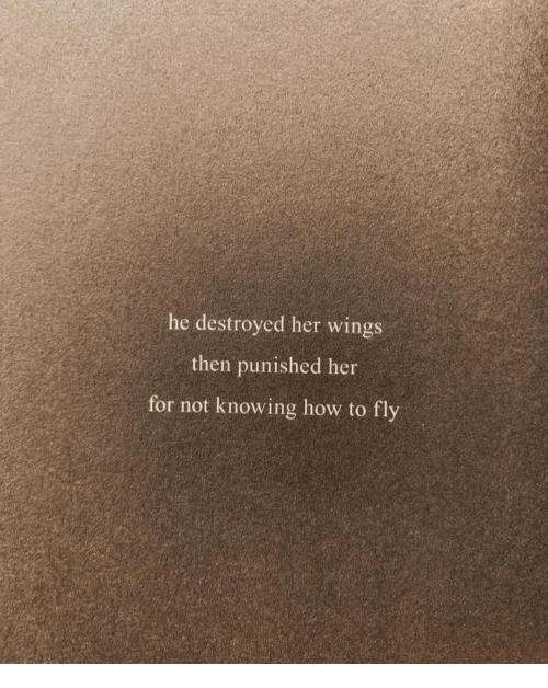 How To, Wings, and How: he destroyed her wings  then punished her  for not knowing how to fly