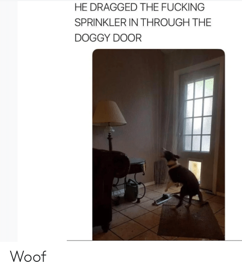 woof: HE DRAGGED THE FUCKING  SPRINKLER IN THROUGH THE  DOGGY DOOR Woof