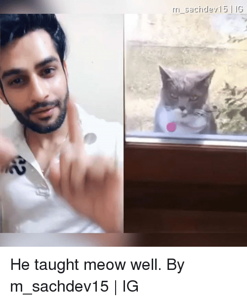 Dank, 🤖, and Meow: He taught meow well.  By m_sachdev15 | IG