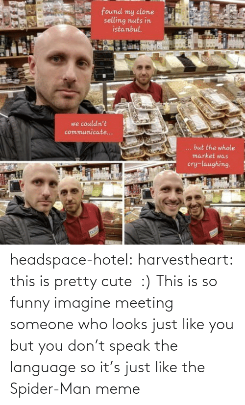 Target: headspace-hotel:  harvestheart: this is pretty cute  :)   This is so funny imagine meeting someone who looks just like you but you don't speak the language so it's just like the Spider-Man meme