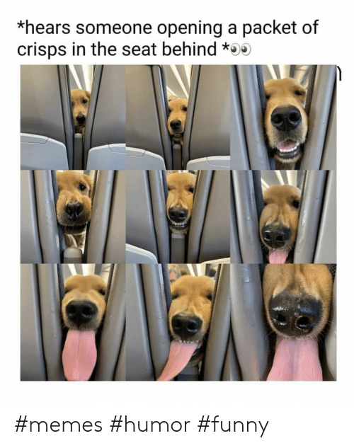 Funny, Memes, and Seat: *hears someone opening a packet of  crisps in the seat behind * #memes #humor #funny