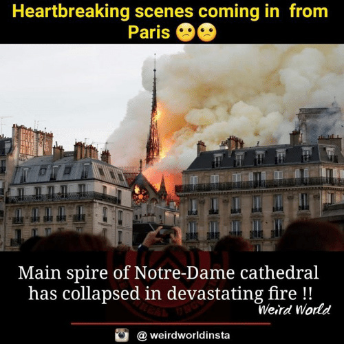 Fire, Memes, and Weird: Heartbreaking scenes coming in from  Paris  Main spire of Notre-Dame cathedral  has collapsed in devastating fire!!  Weird World  @ weirdworldinsta