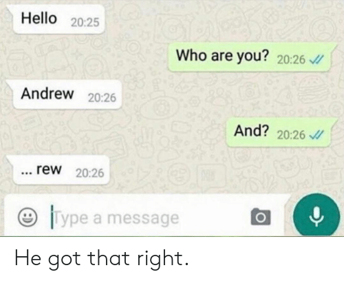 Dank, Hello, and 🤖: Hello 20:25  Who are you? 20:26 v  Andrew 20:26  And? 20:26  rew 20:26  Type a message He got that right.