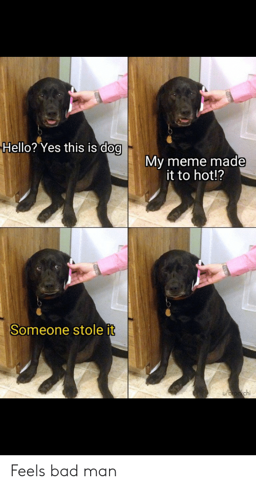 Bad, Hello, and Meme: Hello? Yes this is dog  My meme made  it to hot!?  Someone stole it  u/brockchi Feels bad man