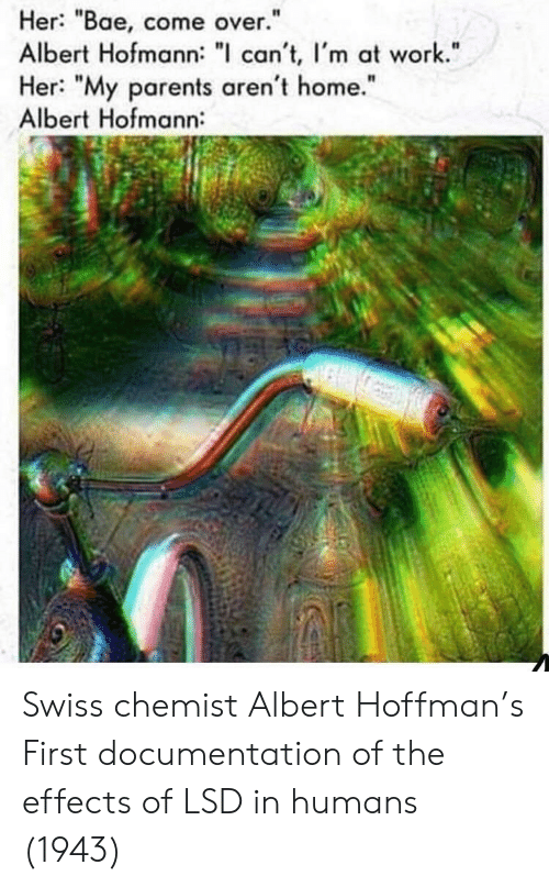 """Swiss: Her: """"Bae, come over.""""  Albert Hofmann: """" can't, I'm at work.""""  Her: """"My parents aren't home.""""  Albert Hofmann:  I1  It Swiss chemist Albert Hoffman's First documentation of the effects of LSD in humans (1943)"""