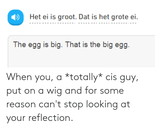 Reason, Looking, and Big: Het ei is groot. Dat is het grote ei.  The egg is big. That is the big egg. When you, a *totally* cis guy, put on a wig and for some reason can't stop looking at your reflection.