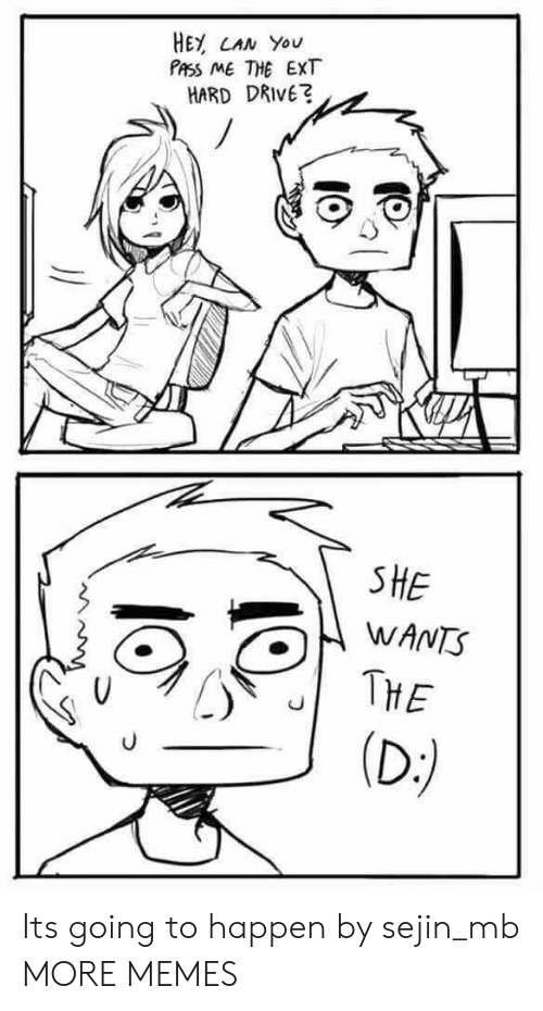 Dank, Memes, and Target: HEY CAN You  PASS ME THE EXT  HARD DRIVE?  SHE  WANTS  THE  (D:) Its going to happen by sejin_mb MORE MEMES