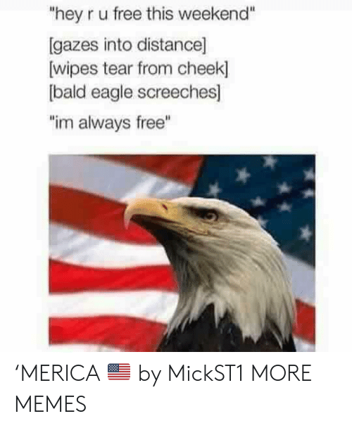 """Dank, Memes, and Target: """"hey r u free this weekend""""  [gazes into distance]  wipes tear from cheek]  bald eagle screeches]  """"im always free"""" 'MERICA 🇺🇸 by MickST1 MORE MEMES"""