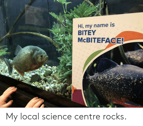Hi My: Hi, my name is  BITEY  MCBITEFACE! My local science centre rocks.