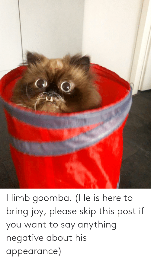 want: Himb goomba. (He is here to bring joy, please skip this post if you want to say anything negative about his appearance)