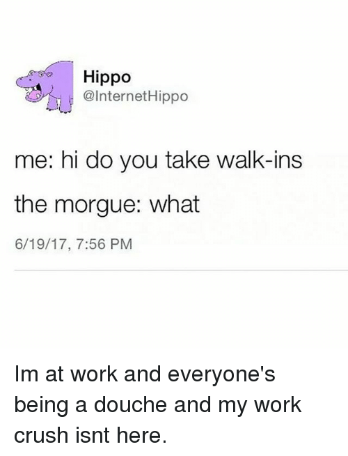 Hippoe: Hippo  @InternetHippo  me: hi do you take walk-ins  the morgue: what  6/19/17, 7:56 PM Im at work and everyone's being a douche and my work crush isnt here.