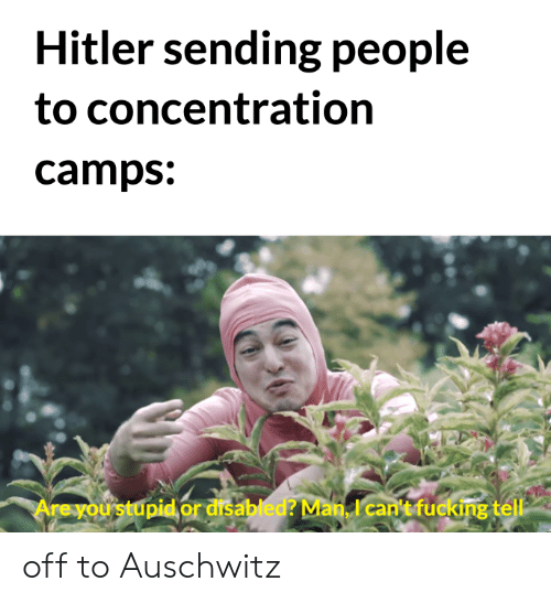 Fucking, Auschwitz, and History: Hitler sending people  to concentration  camps:  Are you stupid or disabled? Man, I can't fucking tell off to Auschwitz