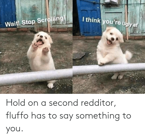 To You: Hold on a second redditor, fluffo has to say something to you.