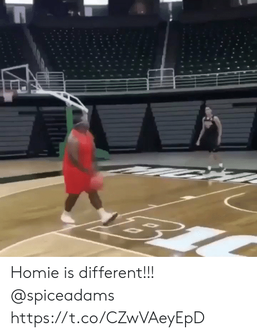 Homie, Memes, and 🤖: Homie is different!!! @spiceadams https://t.co/CZwVAeyEpD