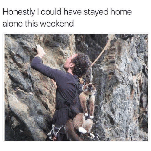 Home Alone: Honestly I could have stayed home  alone this weekend