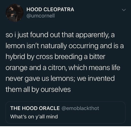 Apparently, Dank, and Life: HOOD CLEOPATRA  @umcornel  so i just found out that apparently, a  lemon isn't naturally occurring and is a  hybrid by cross breeding a bitter  orange and a citron, which means life  never gave us lemons, we invented  them all by ourselves  THE HOOD ORACLE @emoblackthot  What's on y'all mind