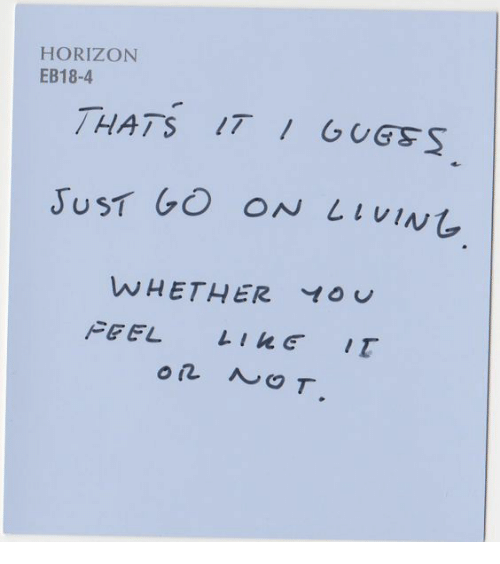 Yo, Horizon, and Go On: HORIZON  EB18-4  THATS 1T GUGSS  JUST GO ON L IVIN  WHETHER YO