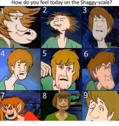 Today, How, and Shaggy: How do you feel today on the Shaggy-scale?