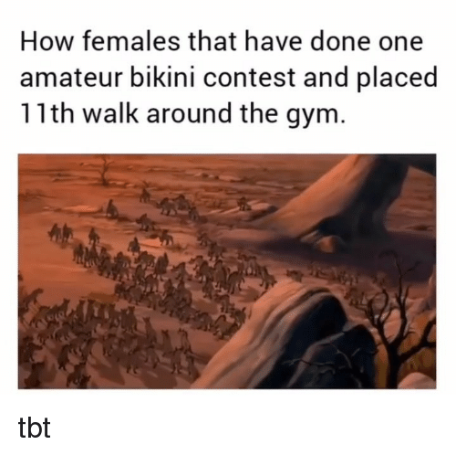 Gym, Memes, and Tbt: How females that have done one  amateur bikini contest and placed  11th walk around the gym tbt