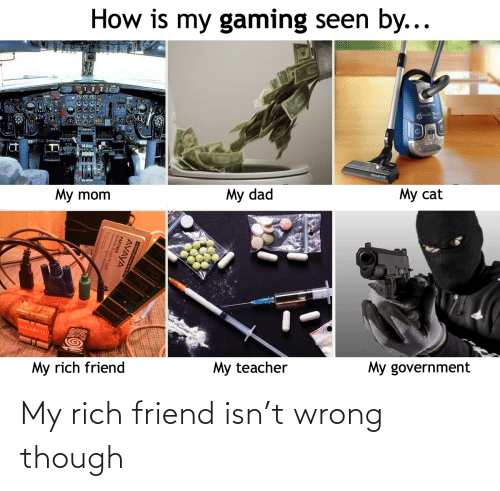 Government: How is my gaming seen by...  My cat  My dad  My mom  GIGABYTE  My government  My rich friend  My teacher  AVAYA  PARTNER  cess PC Card My rich friend isn't wrong though