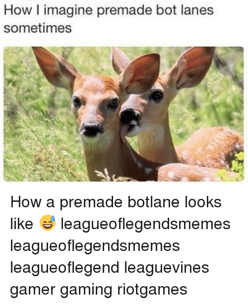 Botting: How l imagine premade bot lanes  sometimes How a premade botlane looks like 😅 leagueoflegendsmemes leagueoflegendsmemes leagueoflegend leaguevines gamer gaming riotgames