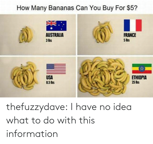 Information: How Many Bananas Can You Buy For $5?  AUSTRALIA  3 lbs  FRANCE  5 lbs  USA  85Ibs  ETHIOPIA  25 lis thefuzzydave: I have no idea what to do with this information