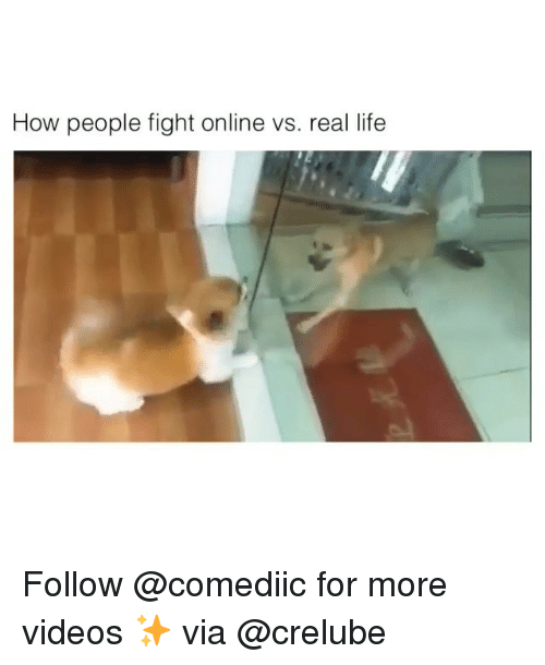 Life, Memes, and Videos: How people fight online vs. real life Follow @comediic for more videos ✨ via @crelube