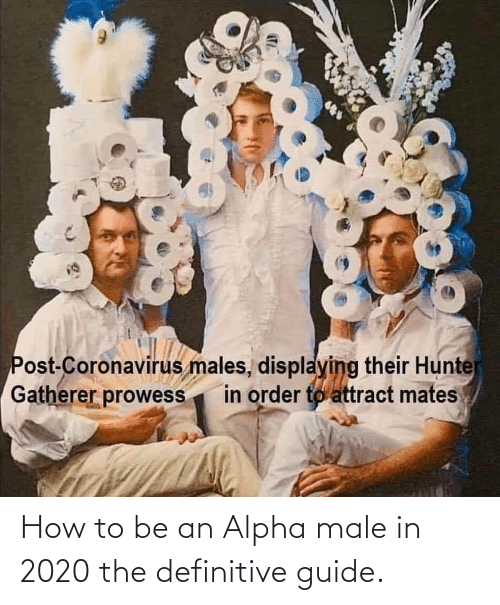 how: How to be an Alpha male in 2020 the definitive guide.