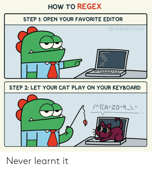 How To, Keyboard, and Never: HOW TO REGEX  STEP 1: OPEN YOUR FAVORITE EDITOR  @GARABATOKID  STEP 2: LET YOUR CAT PLAY ON YOUR KEYBOARD  ICEA-ZO-9_I.- Never learnt it