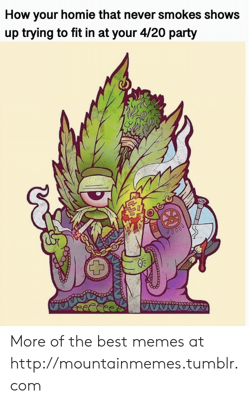 Homie, Memes, and Party: How your homie that never smokes shows  up trying to fit in at your 4/20 party More of the best memes at http://mountainmemes.tumblr.com