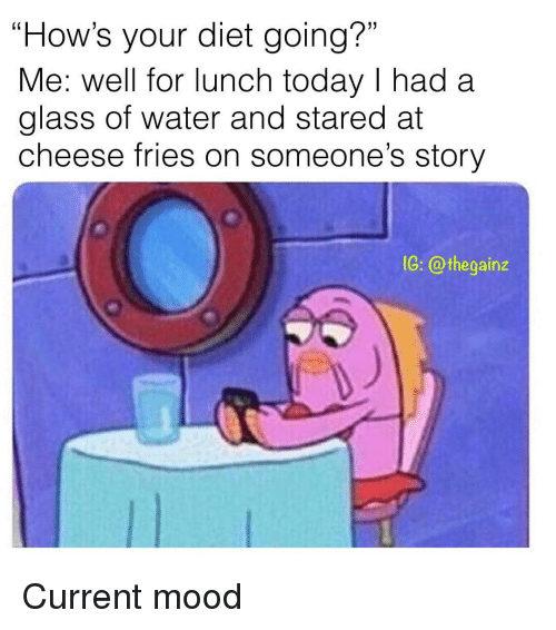 """Memes, Mood, and Today: """"How's your diet going?""""  Me: well for lunch today I had a  glass of water and stared at  cheese fries on someone's story  1G: @thegainz Current mood"""