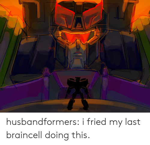 Tumblr, Blog, and Com: husbandformers:  i fried my last braincell doing this.