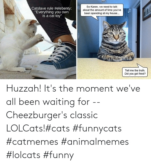 Funny: Huzzah! It's the moment we've all been waiting for -- Cheezburger's classic LOLCats!#cats #funnycats #catmemes #animalmemes #lolcats #funny