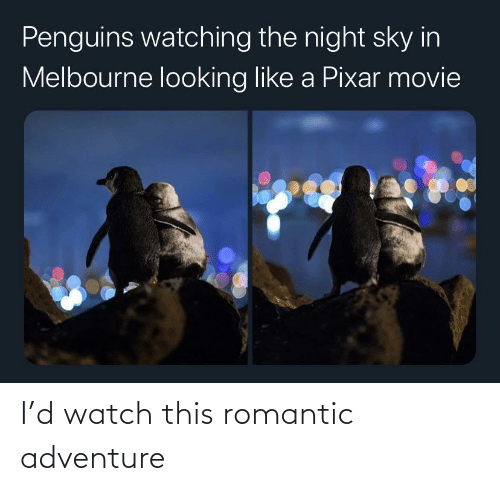 Watch, Adventure, and Romantic: I'd watch this romantic adventure